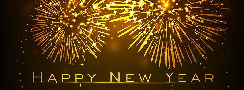 MSJA New Year's banner